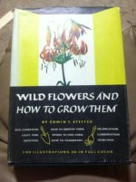 Wild flowers and how to grow them